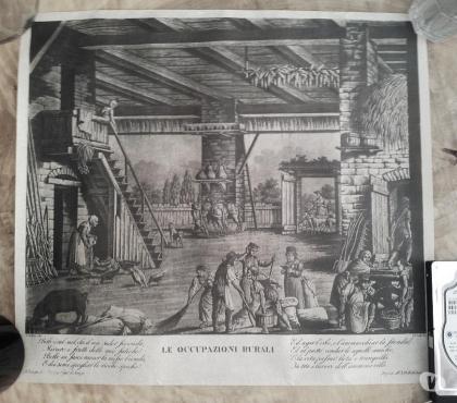 Foto di Vivastreet.it Le occupazioni rurali su pergamena e litografie