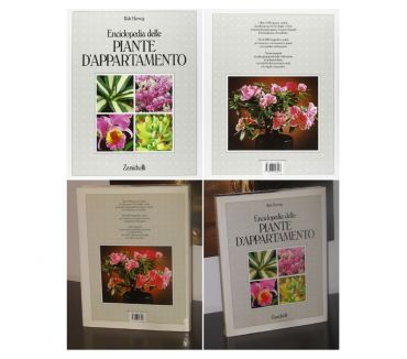 Foto di Vivastreet.it Enciclopedia delle PIANTE D'APPARTAMENTO, Rob Herwig.
