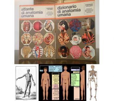 Foto di Vivastreet.it atlante e dizionario di ANATOMIA UMANA, DE AGOSTINI.
