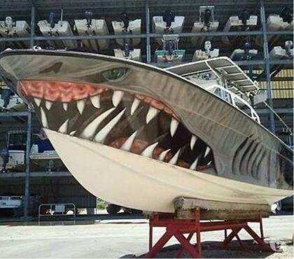 Foto di Vivastreet.it barca open prendisole x tutti usati privati affari