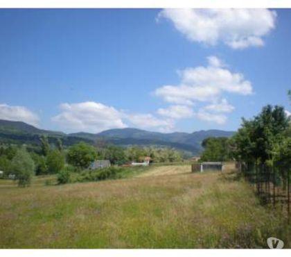 Foto di Vivastreet.it Soci terreno mq. 4000 €.69.000 con mc. 2000 edificabile