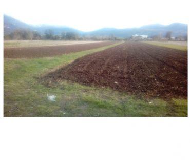 Foto di Vivastreet.it Terreno agricolo di un ettaro
