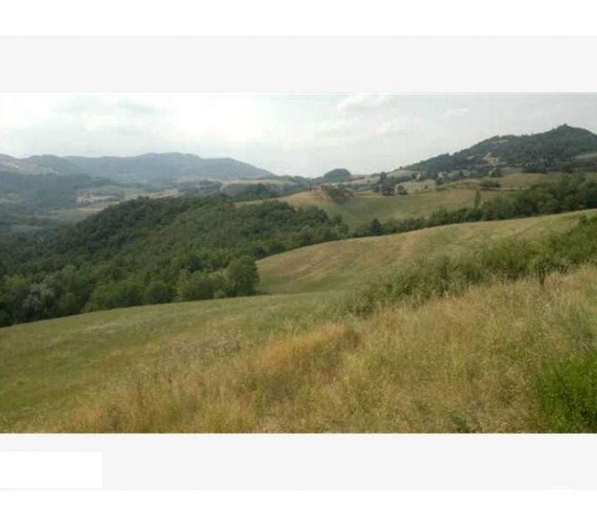 Foto di Vivastreet.it Azienda Agricola BIOLOGICA