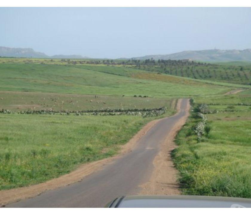 Terrain Agricole / Ferme Kelâat Es Sraghna - Photos pour Ferme à R'HAMNA