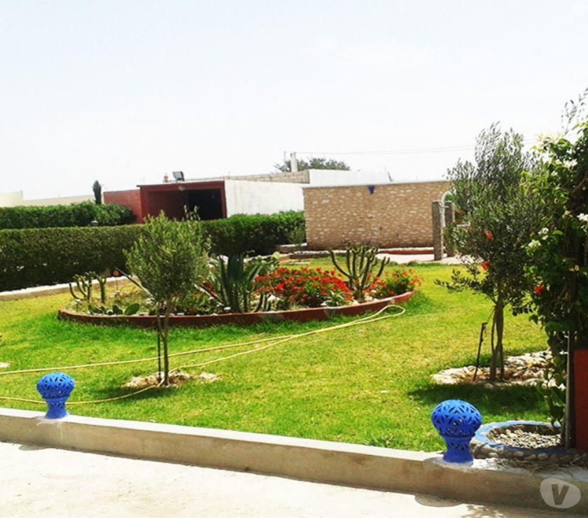 Location Appartement - Maison Essaouira - Photos pour Joli villa en location