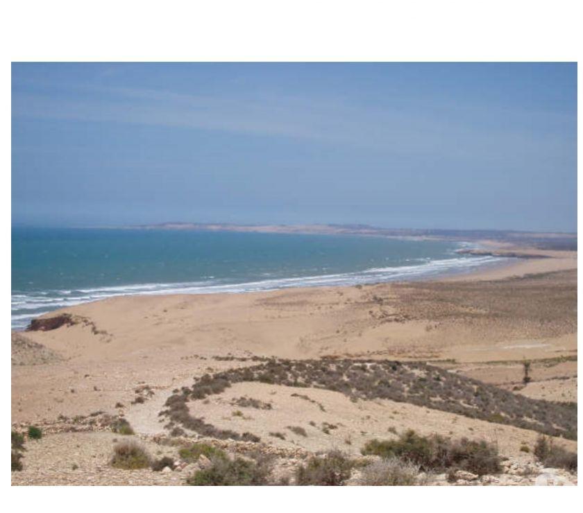 Photos pour SUPERBE TERRAIN AVEC VUE MER, Sidi Kaouki, Essaouira