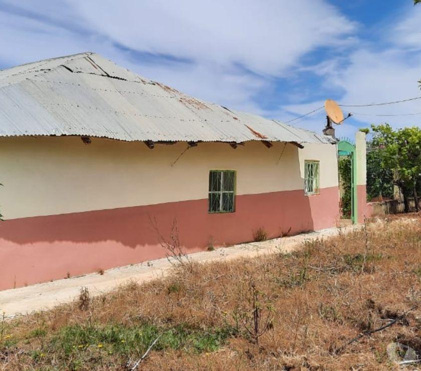 Terrain à Vendre Tanger - Photos pour Ferme pour projet de tourisme rurale