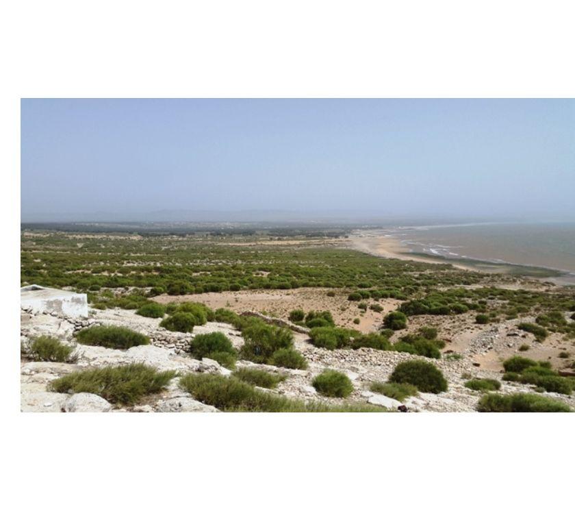 Terrain à Vendre Essaouira - Photos pour TERRAINS PIED DANS L'EAU AVEC TITRE FONCIER