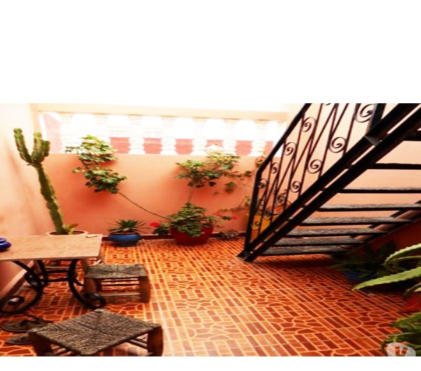 Photos pour bel appartement avec terrasse - Essaouira