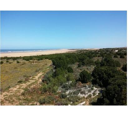 Photos pour Terrain titré à vendre - Moulay Bouzerktoun - Essaouira