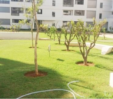 Photos pour Appartement avec terrasse à louer aux Orangeraie Souissi