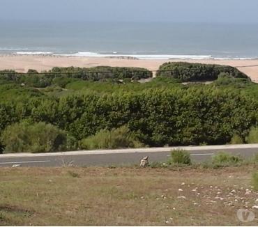 Photos pour Terrain 1200m², Essaouira