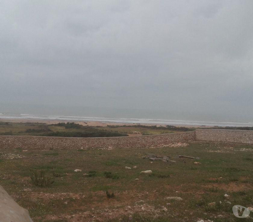 Terrain à Vendre Essaouira - Photos pour Terrain à MLY bouzarktoun 2000m²